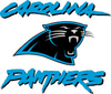 Carolina Panthers 100